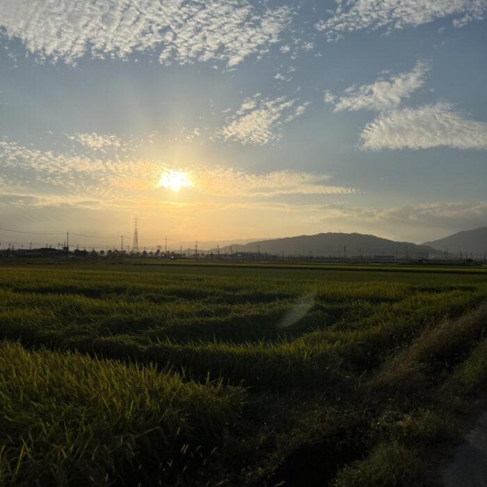 空と山と田んぼ、そして夕焼け。